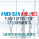 american airlines cabin crew requirements